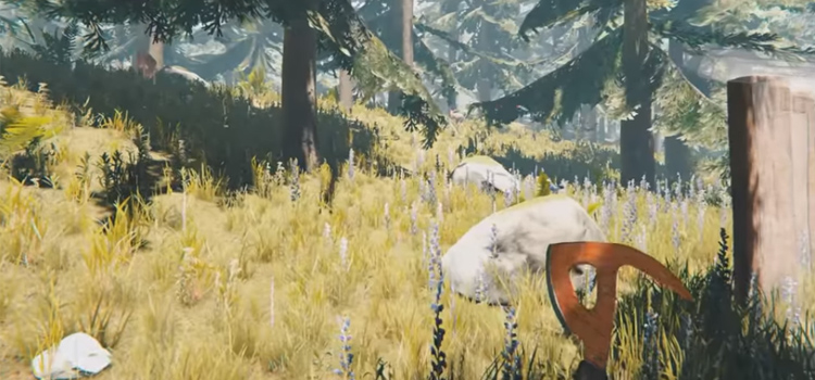 HD Screenshot of The Forest gameplay