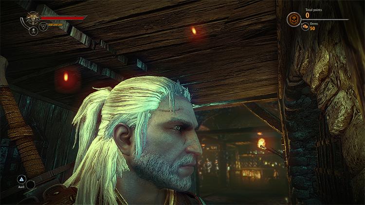Geralt Complete Beard Mod