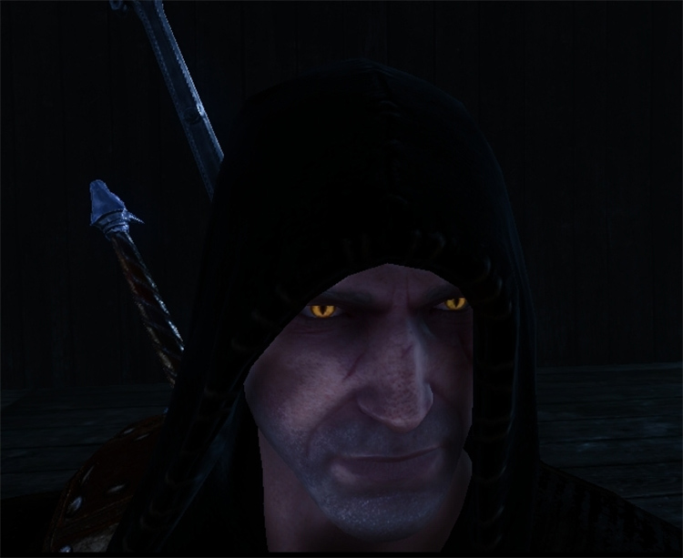Vivid Eyes Mod for Witcher2