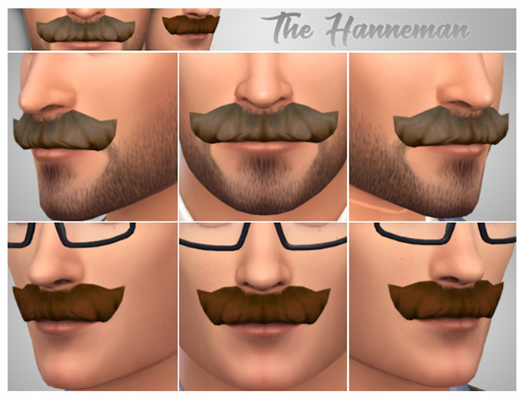 The Hanneman Sims 4 CC