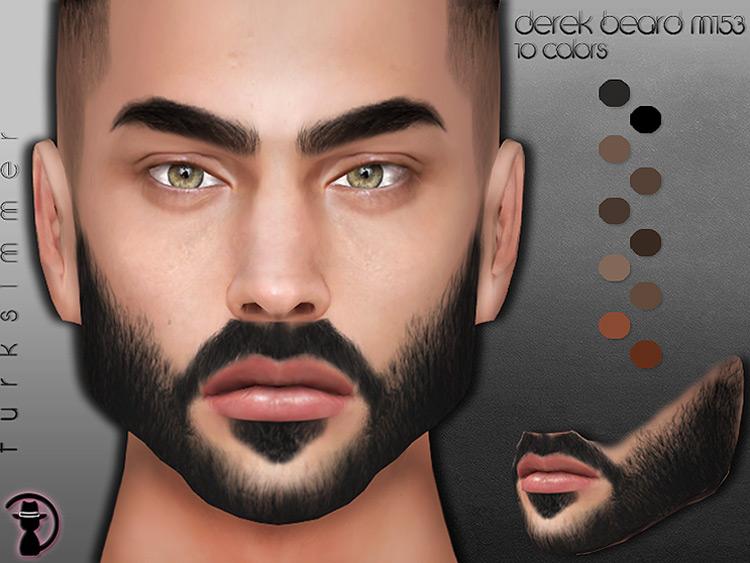 Derek Beard Sims 4 CC