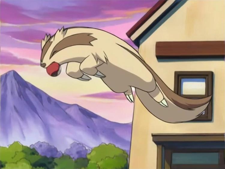 Linoone in Pokemon anime