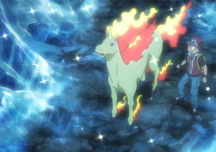 Rapidash in the Pokemon anime