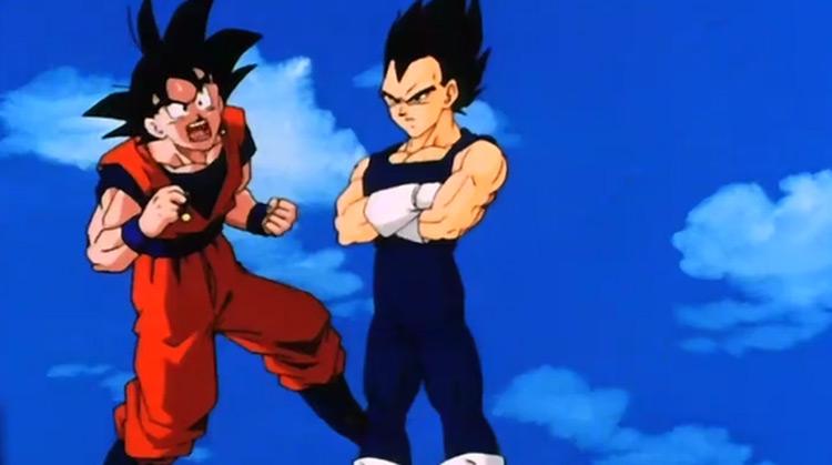 Goku and Vegeta from Dragon Ball Z anime