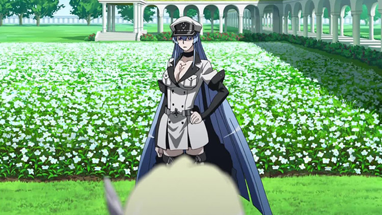 Esdeath from Akame ga Kill anime