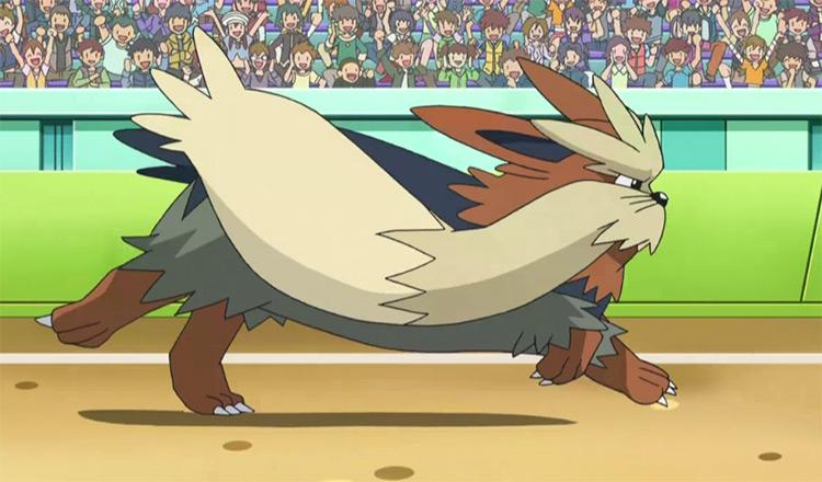 Stoutland Pokemon dog