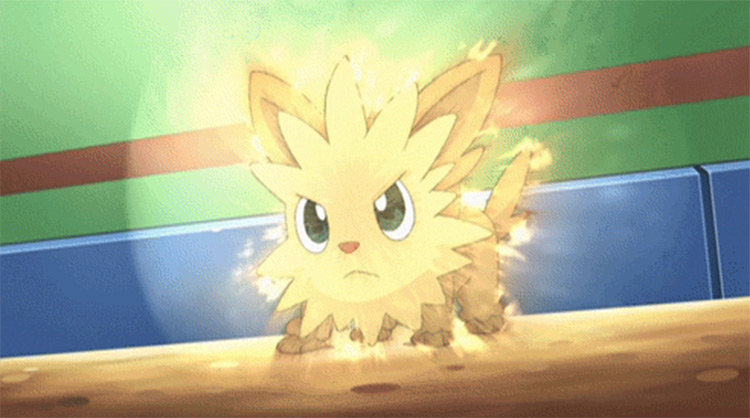 Lillipup puppy Pokemon from the anime