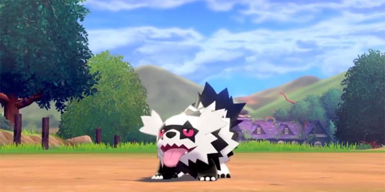 Galarian Zigzagoon racoon and dog monster