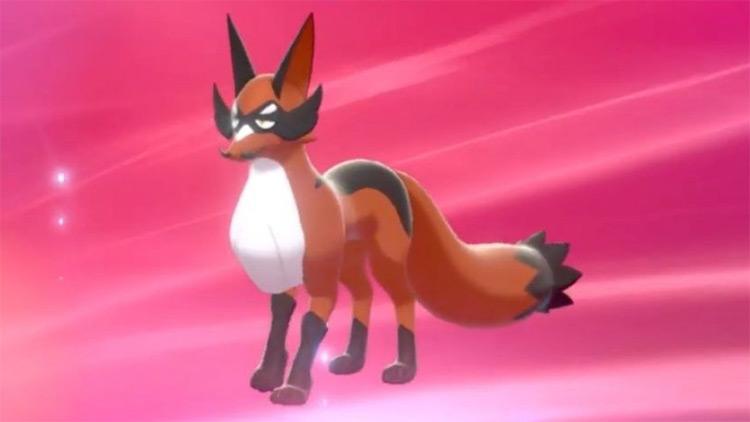 Thievul gen8 dog Pokemon