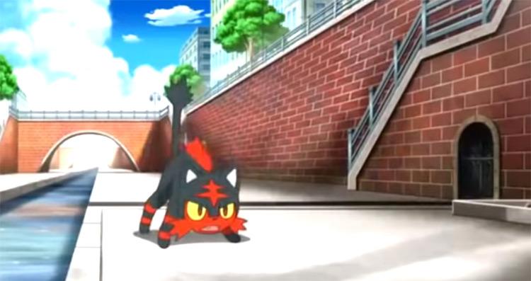 Litten anime screenshot