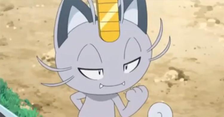 Alolan Meowth anime screenshot