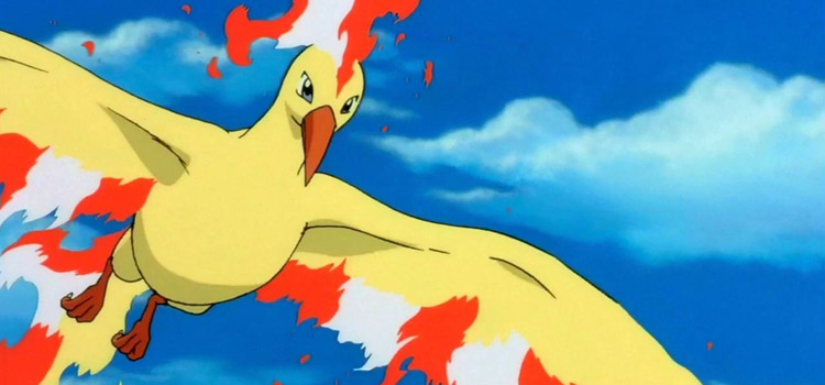 Moltres legendary bird in the anime