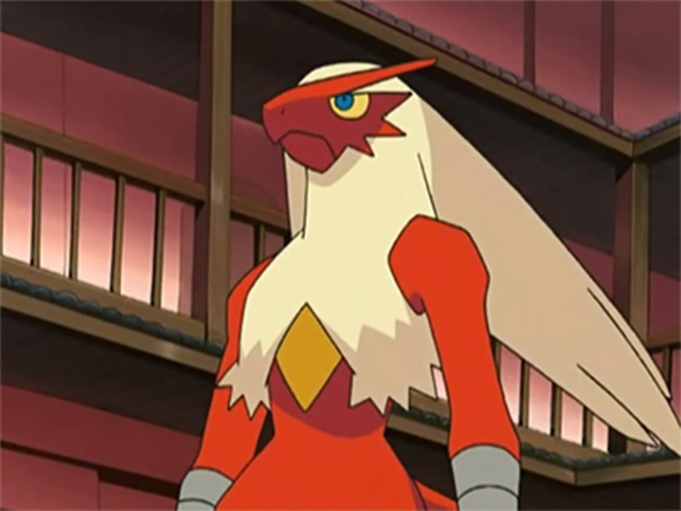 Blaziken in the anime