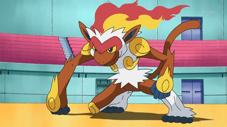 Infernape from the anime