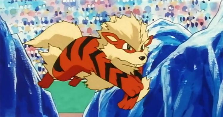 Arcanine screenshot from Pokemon anime