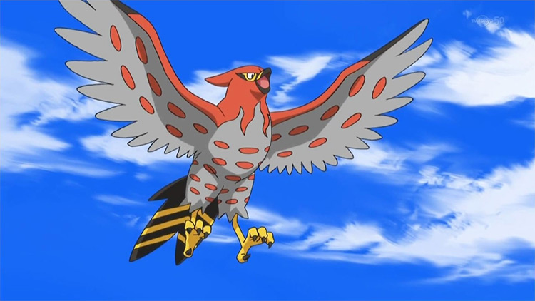 Talonflame in the Pokemon anime