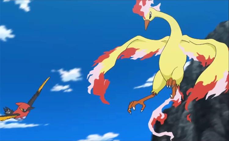 Moltres legendary bird in Pokemon anime